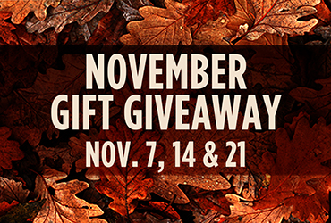 November Gift Giveaways - Las Vegas Deals