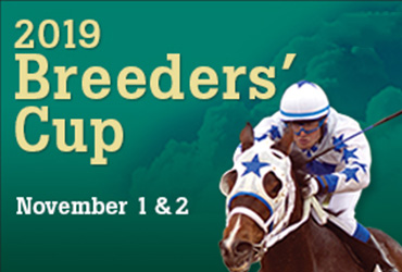 FREE Breeders' Cup Race Betting Seminar